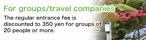 Groups/travel companies